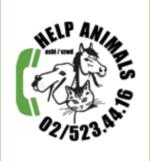 HELP ANIMALS