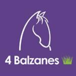Refuge 4 Balzanes